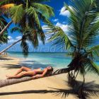 woman sunbathing on coconut tree, beach, Dominican Republic, Caribbean, South America, model released