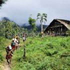 Expeditiopn in die Arfak Berge, West Papua, Neuguinea, Indonesien, Asien
