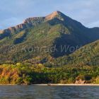 Mahale Mountains Nationalpark, Regenwald, Tansania, Ostafrika