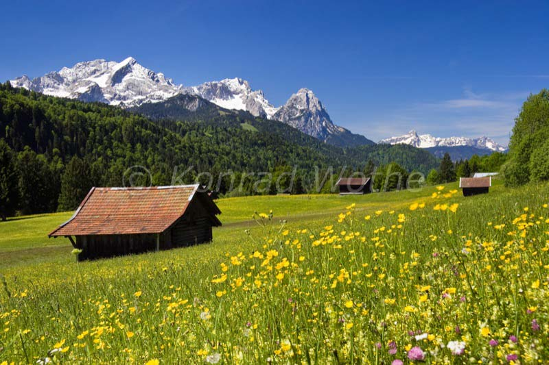 Bavaria Moments Of Nature Konrad Wothe